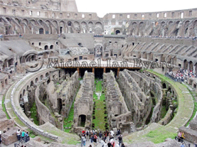 Colloseum Arena area